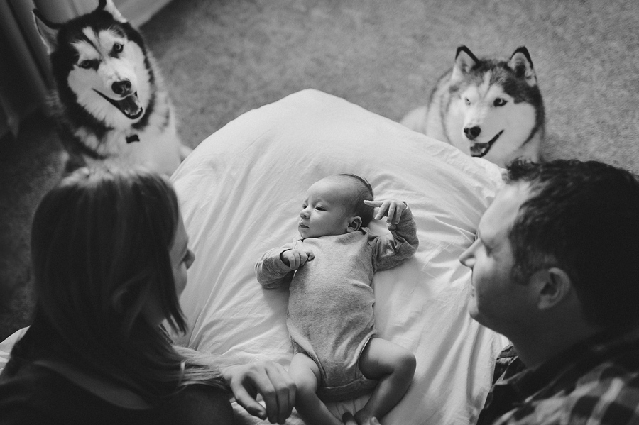 Newborn Photos Portland Oregon Capturing Grace Photography