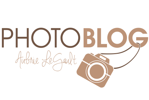 Portland Oregon Portrait Photographer, Capturing Grace Photography logo